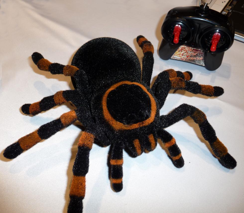 spider_980