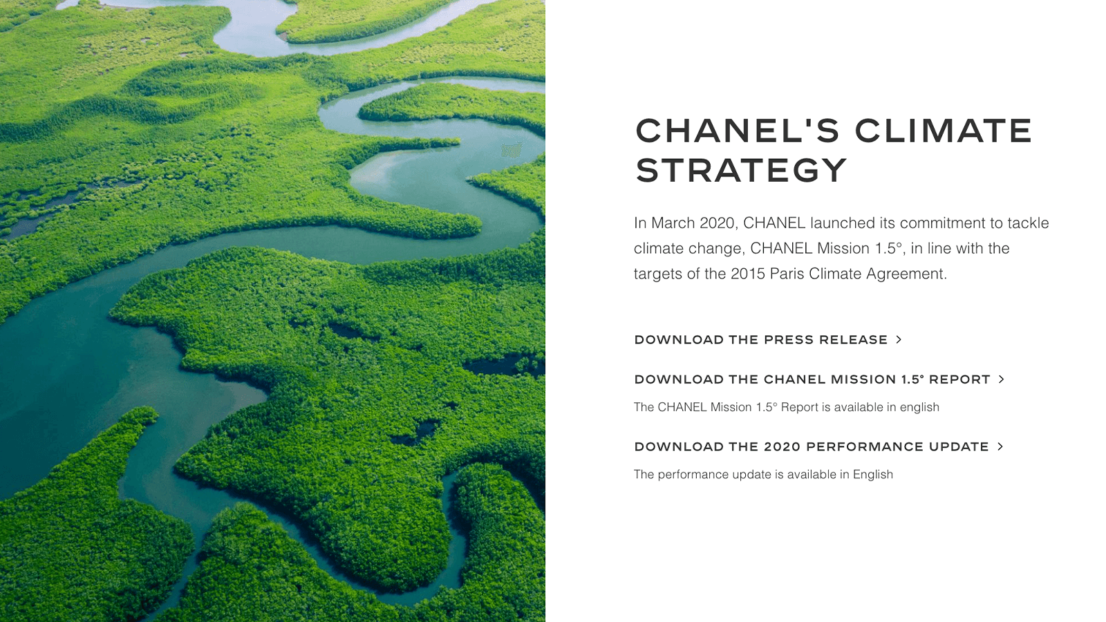 Top Luxury brand, Chanel's Sustainability efforts