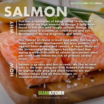 PROTEIN_salmon