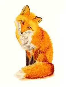 рыжая хитрая лиса