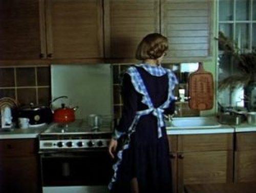 Советский стиль в интерьере кухни-1