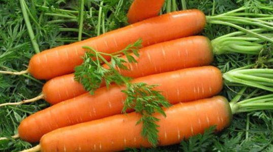 Как правильно хранить морковь зимой
