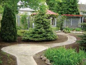 Ландшафтный дизайн дачии организация дорожек к дому
