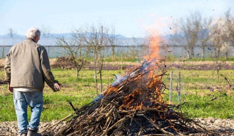 Можно ли сжигать мусор на огороде