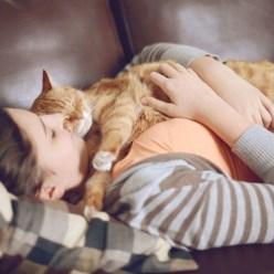 Почему кошки спят на своих хозяевах