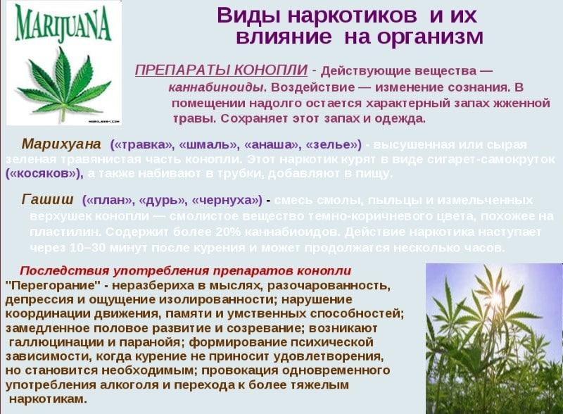 Как отойти от эффекта марихуаны употребление конопли внутрь