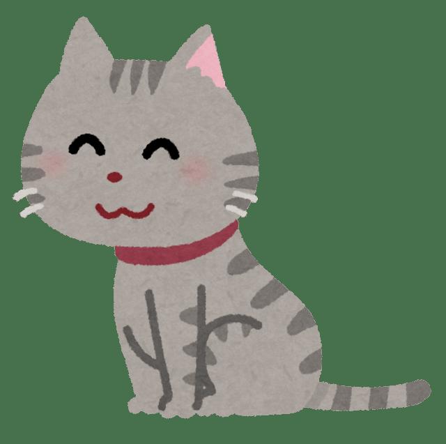 pet_cat_sit (3).png