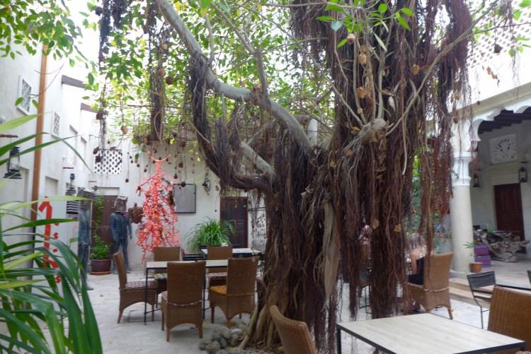 XVA's lovely courtyard cafe.