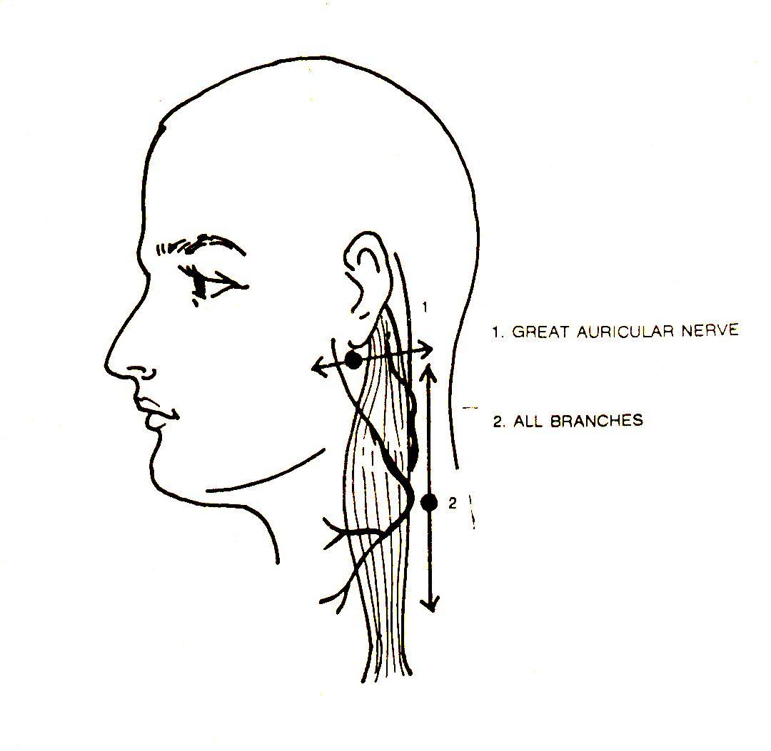 Enlarged Lymph Node Axilla Icd 9