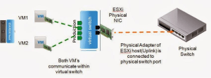 traffic Standard vswitch