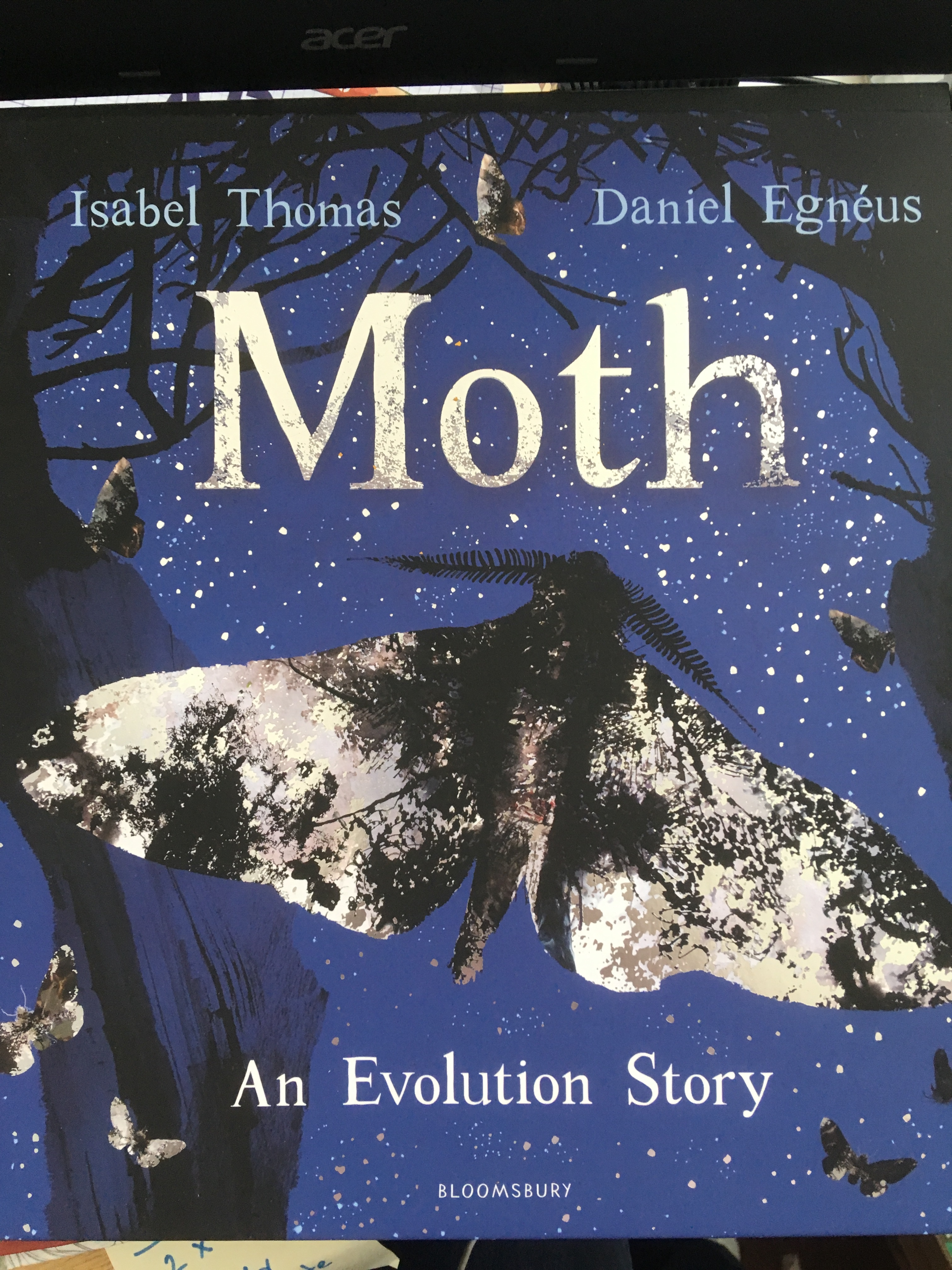 Review Moth An Evolution Story By Isobel Thomas V