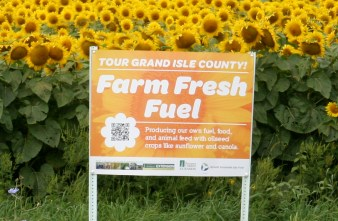 Photo courtesy of UVM Extension Northwest Crops and Soils Program.