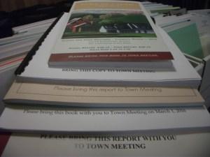 town meeting