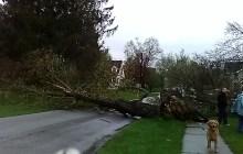 Updated: Utility crews converge on Rutland region after intense surprise windstorm