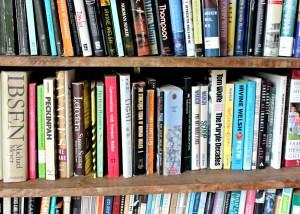 Zevon library bookcase