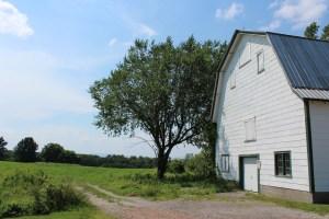 Wheelock Farm