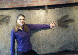 Robin Hopps, at the Perkin's Museum of Geology at the University of Vermont, shows off the footprints of an unidentified dinosaur, marks embedded in now-polished rock. The footprints, known as trace fossils, were discovered in Central Massachusetts. Photo by Dirk Van Sustern