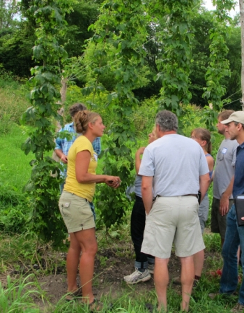 UVM Extension agronomist and hops expert Heather Darby, left, talks about the key ingredient in beer with visitors at the hops yard in Alburgh. Photo by UVM Extension Northwest Crops & Soils Team