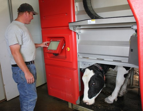 Ashley Farr of Farr Farms in Richmond programs his Lely Astronaut robotic milker while a cow is milked by the machine. Farr bought the machine used last year. Photo by Andrea Suozzo