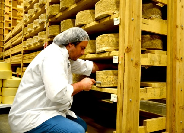 """Mateo Kehler takes a sample from a 35-pound wheel of Cabot clothbound cheddar being aged in the innovative ripening cellars at Jasper Hill Farm in Greensboro. Three years after building the $3 million facility, the """"caves"""" are producing award-winning cheeses and unraveling the science of aging cheese. Photo by Andrew Nemethy"""