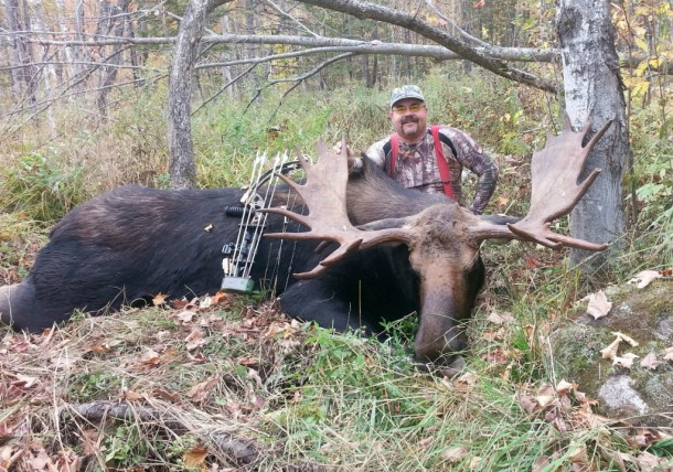 A trophy moose is an impressive animal, such as this one taken this fall by Kevin Rice in Bloomfield. Moose were a staple of native Americans and colonists, valued for their ample supply of sustaining tasty meat.  They are still prized by hunters as well as wildlife watchers, but moose in the Northeast are facing new challenges from pests and a warming climate. Photo courtesy Cedric Alexander