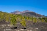 Foto 3. El Teide Tenerife