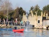 Dolfijnendelta Dolfinarium Harderwijk