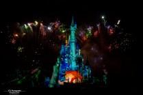 Disneyland Paris Illuminations Lion King