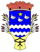 logo-cerny