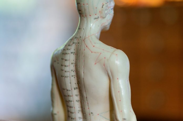 Partial close up of a male acupuncture doll.