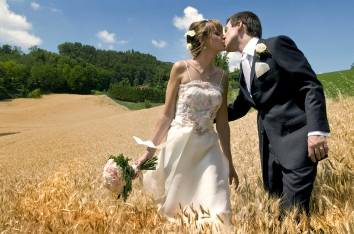 Newlywed couple kissing in a field of wheat.