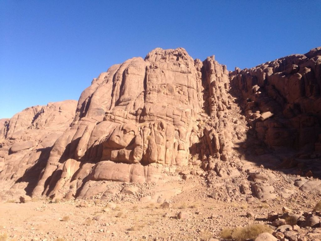 Research to Mount SINAI-16