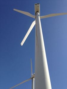 Trip to Huge Forest of Giant Wind Turbines-11