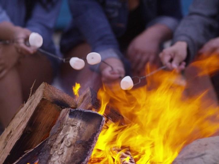 stovyklautojai prie laužo kepantys zefyrus