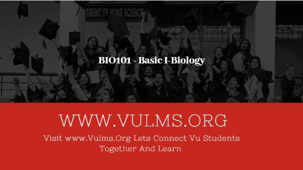 BIO101 - Basic I-Biology