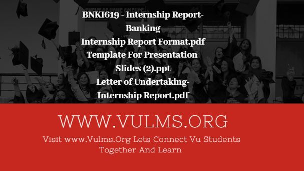 BNKI619 - Internship Report-Banking - Download Handout