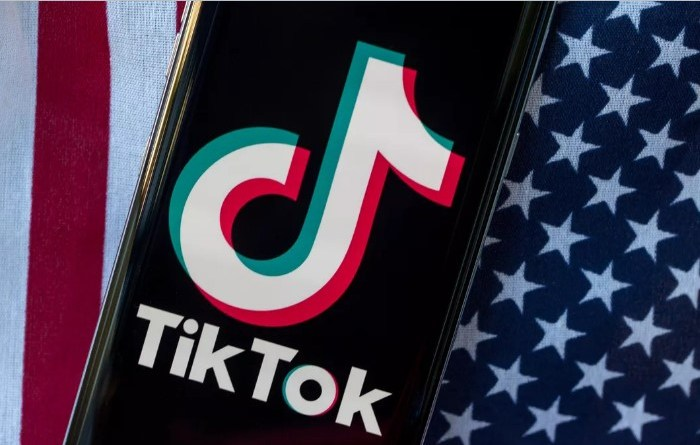 TikTok removed more than 380,000 US videos this year for hate speech