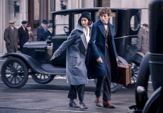 Newt Porpentina Katherine Waterston Fantastic Beasts Film Review