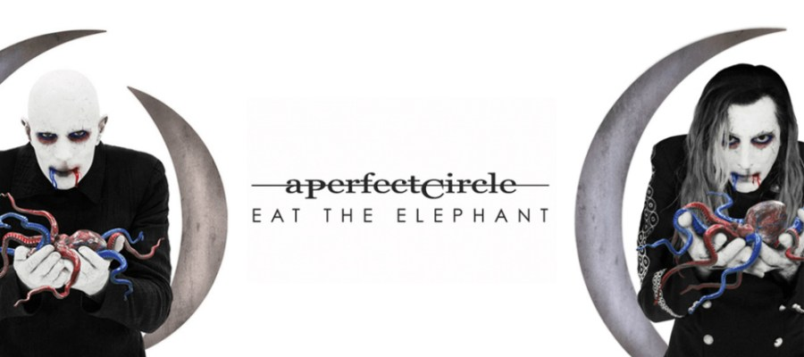 APC Eat the Elephant