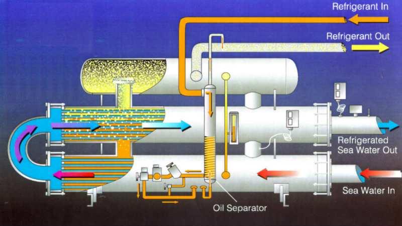 Nhớt lạnh Shell Clavus (Tên mới: Shell Refrigeration Oil)