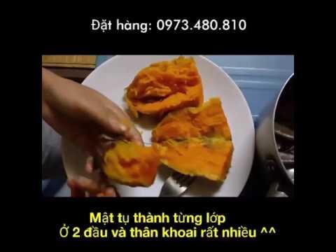 cách nấu khoai lang mật - Cảnh báo về KHOAI LANG MẬT Đà Lạt