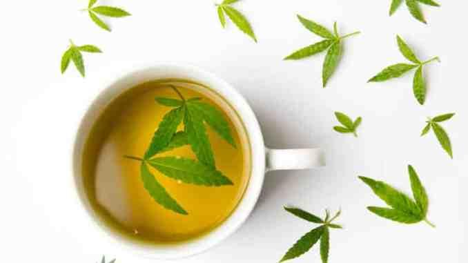 Čaj od marihuane