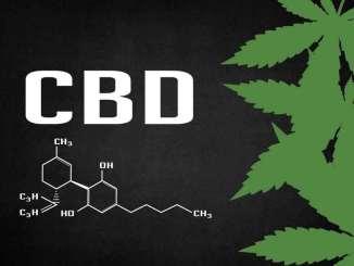 CBD kao lijek