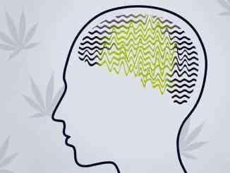 Epilepsija i marihuana