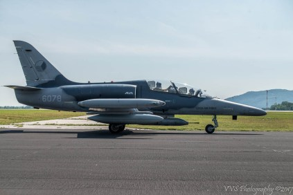 Czech Air Force L-159T1 ALCA