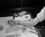 Roy Heckler Feeding Flea Circus on His Arm