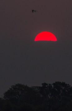 Africa, Sunset