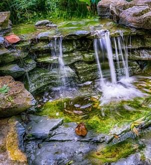 Zilker Park, Austin, waterfall