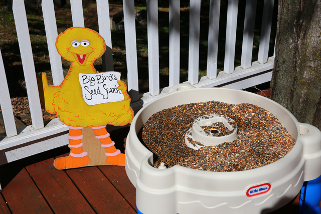 A Perfect Sesame Street Birthday Party For A Two Year Old