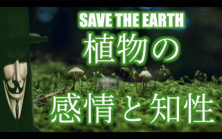 【SAVE THE EARTH】植物の感情と知性